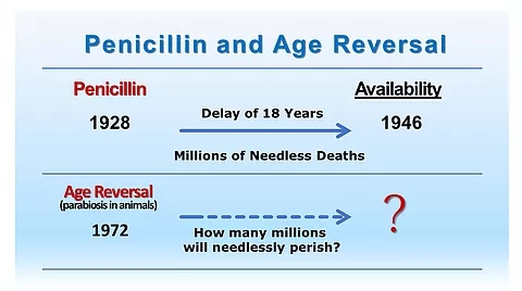 SLIDES_Penicillin and Age Reversal